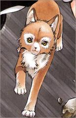 Inuki